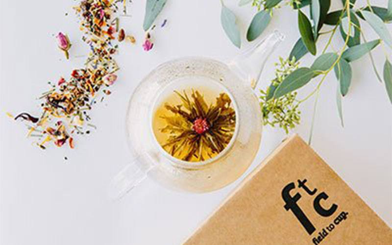 fieldtocup tea subscription box